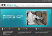 http://www.moldcleanupservices.com